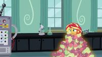 Sunset buried in magic apples EG3