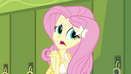"Fluttershy ""tuck him into your backpack"" EG"