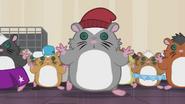 Hamsters hypnotized EG2