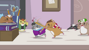 Hamster whacking hamster with a pencil EG2