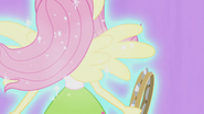 Fluttershy sprouting wings EG2