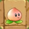 File:Peach2.png