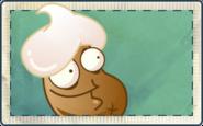 Cream Bean Seed Packet