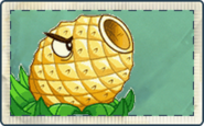 Pineapple Cannon Seed Packet