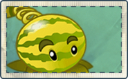 Melon Slice-pult Seed Packet