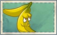 Banana Seed Packet