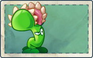 Venus Flytrap (PVZOL) Seed Packet