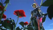 Firion y las Rosas Salvajes.jpg