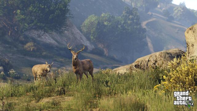 Archivo:Fauna PS4.jpg