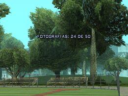 Fotografía 24
