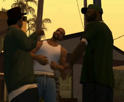 House Party CJ, Ryder y Sweet