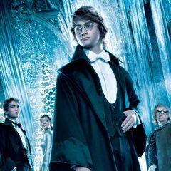 Harry, Cedric, Cho y Ojoloco
