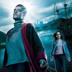 Viktor y Hermione