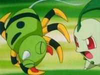 Archivo:EP146 Spinarak golpeado por Chikorita.jpg