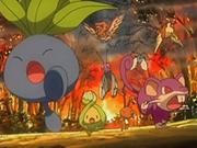 EP540 Pokémon huyendo del bosque