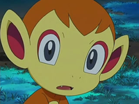 Archivo:EP522 Chimchar.png
