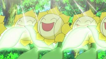 Archivo:EP607 Sunflora absorbiendo la luz del sol.png