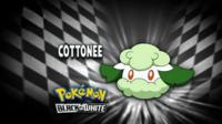 EP692 Quién es ese Pokémon
