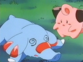 EP248 Cleffa y Phanpy.png