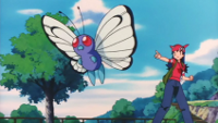 Archivo:P03 Butterfree.png