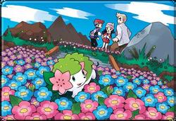 Paraíso Floral Pokémon Platino (Ilustración)