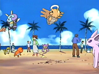 Archivo:EP398 Coordinadores Pokémon.png