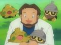 EP274 Profesor Abedul rodeado de Pokémon (2).png