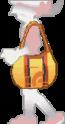 Bolsa de la chica en Pokémon Oro HeartGold y Plata SoulSilver