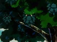 Archivo:EP145 Pineco en los árboles (2).png