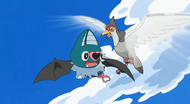 EP730 Tranquill vs. Swoobat
