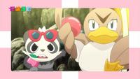 EP904 Gran espectáculo Pokémon Poké TV.png