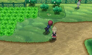 Kalos screen4
