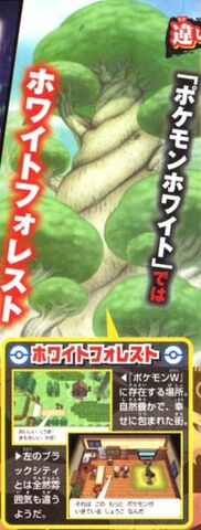 Archivo:Scan CoroCoro Bosque Blanco.jpg