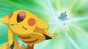 EP664 Dewott golpea a Pikachu