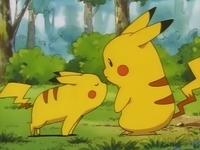 Archivo:EP039 Pikachu pequeño oliendo a Pikachu.png