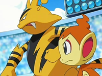 Archivo:EP521 Electabuzz y Chimchar.png