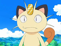 Archivo:EP552 Meowth.png