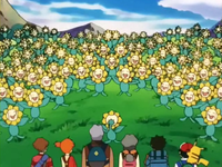 Archivo:EP189 Sunflora (3).png