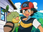EP535 Turtwig mordiendo el brazo a Ash