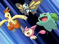 Archivo:EP391 Pokémon de May al ataque!.png