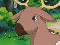 Archivo:EP127 Stantler (4).png