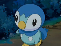 Archivo:EP567 Piplup.png