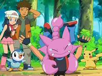 Archivo:EP554 Gligar cayendo encima de Ash.png
