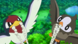 EP844 Taillow y Starly