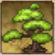 Tree 2 PK.png