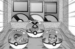 Black eligiendo a su pokémon starter