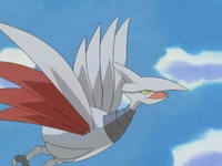 Archivo:EP334 Skarmory.png