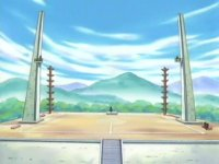 Archivo:EP361 Gimnasio Pokémon de Ciudad Arborada.jpg