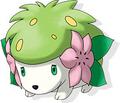 Shaymin tierra en Pokémon Ranger 2.png