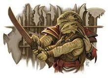 Dragonborn recruit